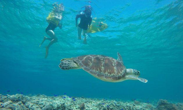 SnorkelingGIliIsland_(17)